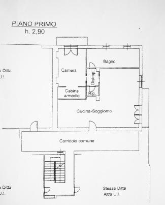 Piantina-modif