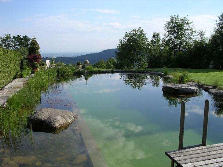 bio-piscina